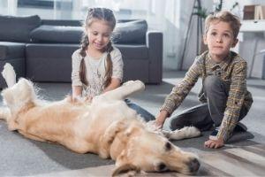 Kinderbesuch mit Hund