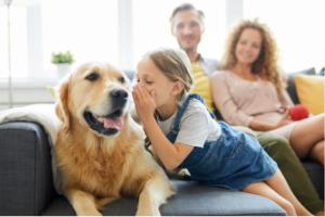Lernpfote e. V. Blogbeitrag: Kind und Hund - Teil 2 - Regeln für ein stressfreies Miteinander