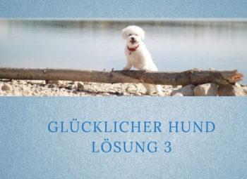 Lernpfote-Podcast: Folge 004: Glücklicher Hund - Lösung 3