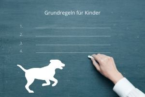 14 Grundregeln für Kinder im Umgang mit dem Hund