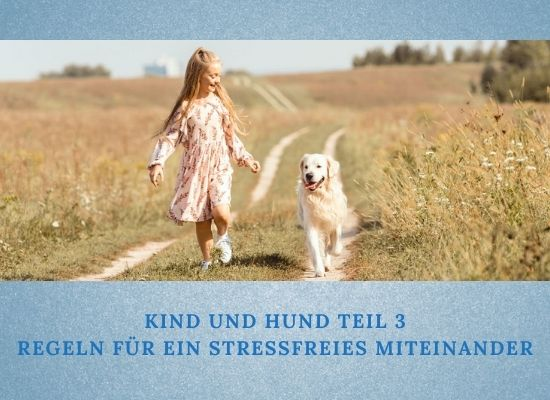 Lernpfote e. V. Podcast-Folge 051: Kind und Hund - Teil 3 - Regeln für ein stressfreies Miteinander