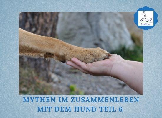 Lernpfote e. V. Podcast-Folge 078 Mythen im Zusammenleben mit dem Hund Teil 6