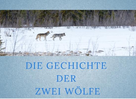 Lernpfote-Podcast Folge 008: Die Geschichte der zwei Wölfe