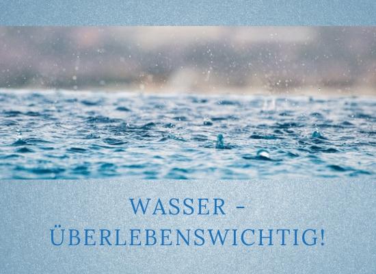 Lernpfote-Podcast, Folge 019: Wasser-überlebenswichtig