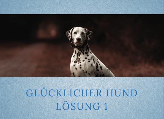 Lernpfote-Podcast: Folge 002 Glücklicher Hund - Lösung 1